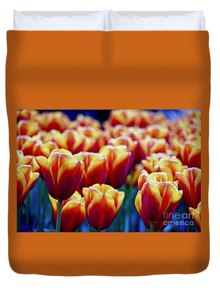 Tulips At Sunset Duvet Cover