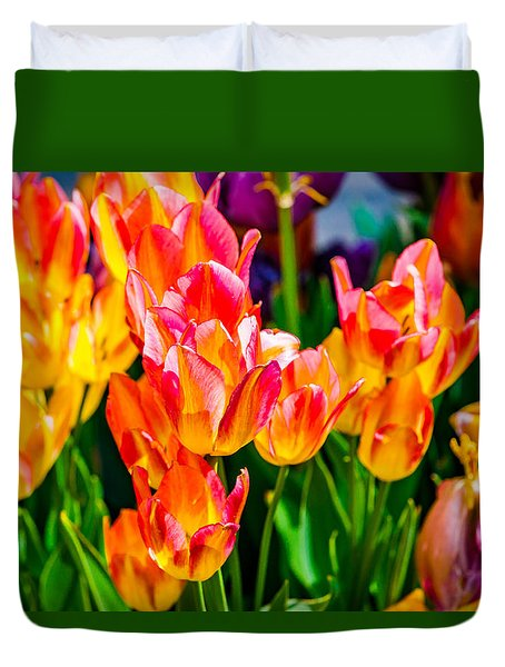 Tulips Enchanting 10 Duvet Cover