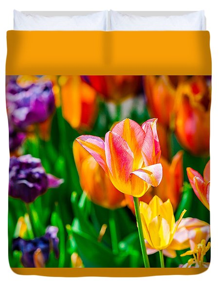 Tulips Enchanting 11 Duvet Cover