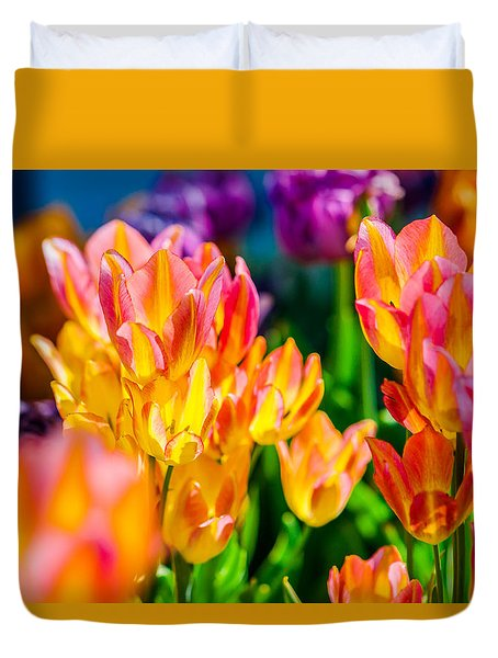 Tulips Enchanting 14 Duvet Cover