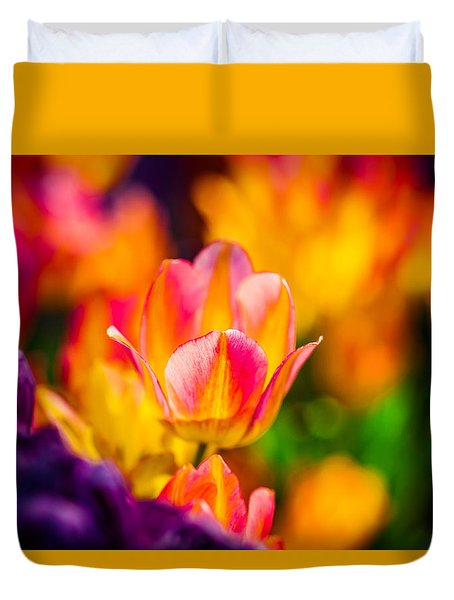 Tulips Enchanting 15 Duvet Cover