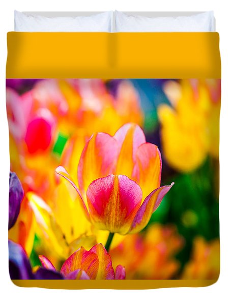 Tulips Enchanting 16 Duvet Cover