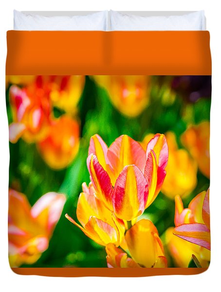 Tulips Enchanting 18 Duvet Cover
