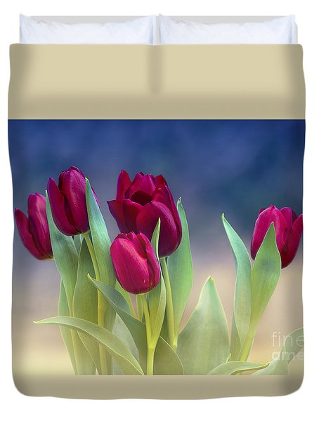 Tulips For Spring Duvet Cover by Rima Biswas