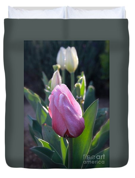 Duvet Cover featuring the photograph Tulips In The Morning 2 by Suzanne Oesterling