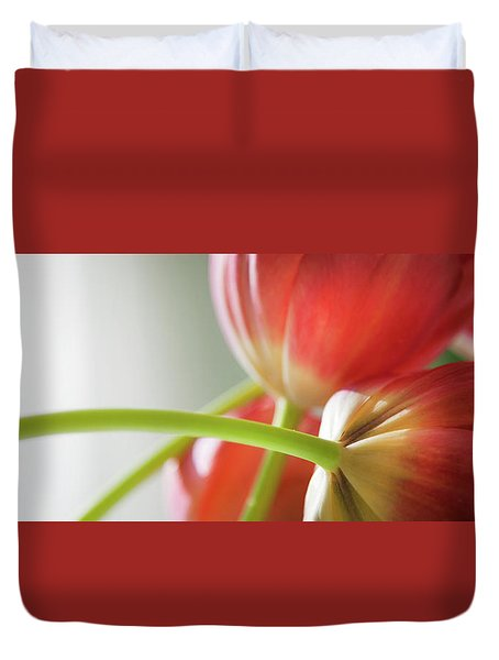 Tulips In The Morning Duvet Cover by Theresa Tahara