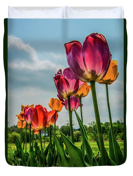 Tulips In The Spring Duvet Cover by Jane Axman