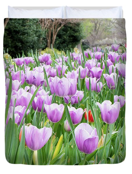 Dallas Arboretum Violet Tulips 030917 Duvet Cover