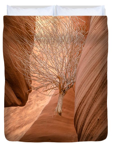 Tumbleweed In Owl Canyon Duvet Cover
