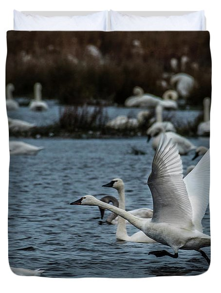 Tundra Swan And Liftoff Head Start Duvet Cover