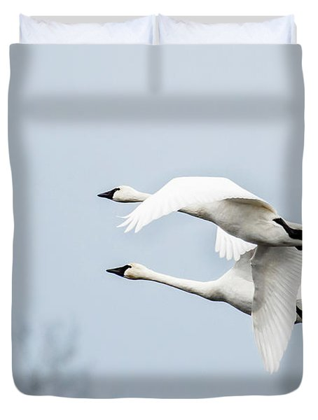 Tundra Swan Lift-off Duvet Cover