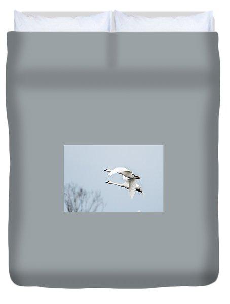 Tundra Swan Lift-off Duvet Cover