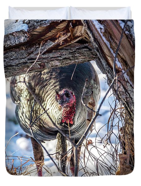Duvet Cover featuring the photograph Turkey In The Brush by Paul Freidlund