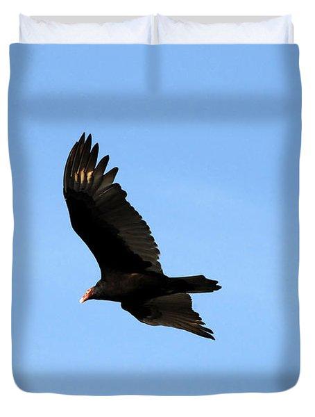 Turkey Vulture Duvet Cover by David Lee Thompson