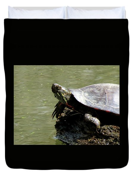 Turtle Bask Duvet Cover