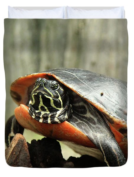 Turtle Neck Duvet Cover