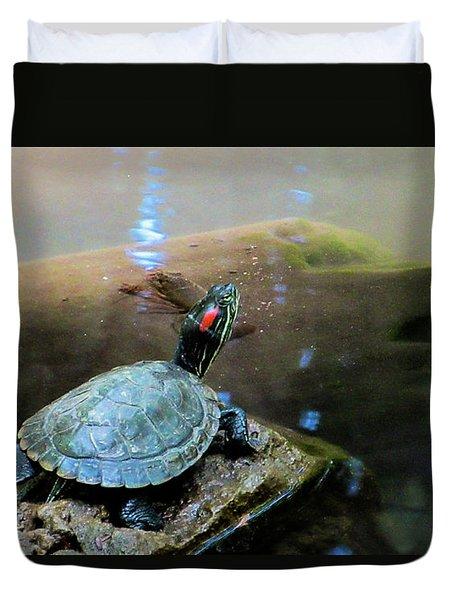 Turtle On Rock Duvet Cover