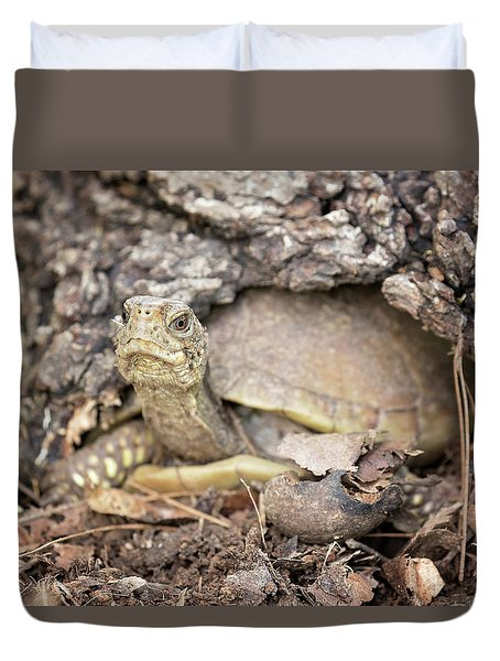 Turtle Town Duvet Cover