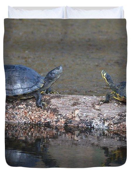 Turtles On A Log Duvet Cover