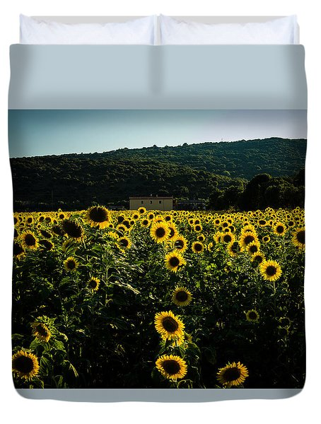 Tuscany - Sunflowers At Sunset Duvet Cover