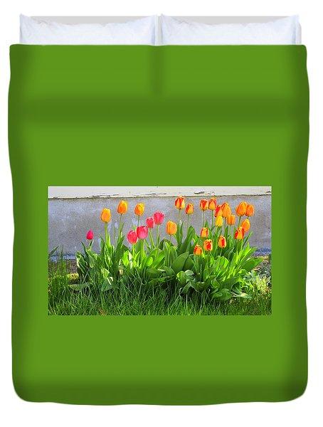 Twenty-five Tulips Duvet Cover