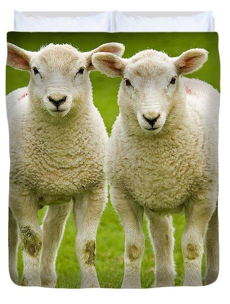 Twin Lambs Duvet Cover