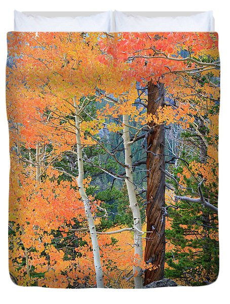 Twisted Pine Duvet Cover