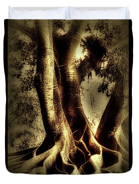 Duvet Cover featuring the photograph Twisted Trees by Tom Prendergast