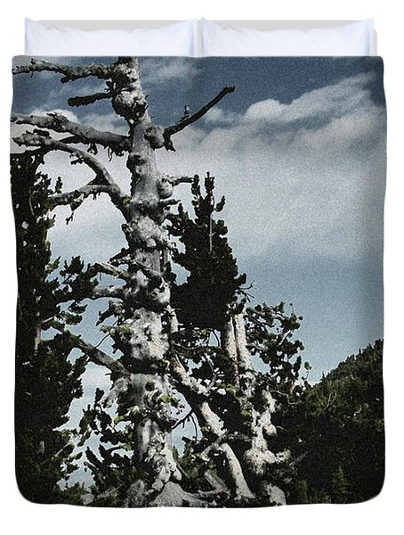 Twisted Whitebark Pine Tree - Crater Lake - Oregon Duvet Cover by Christine Till