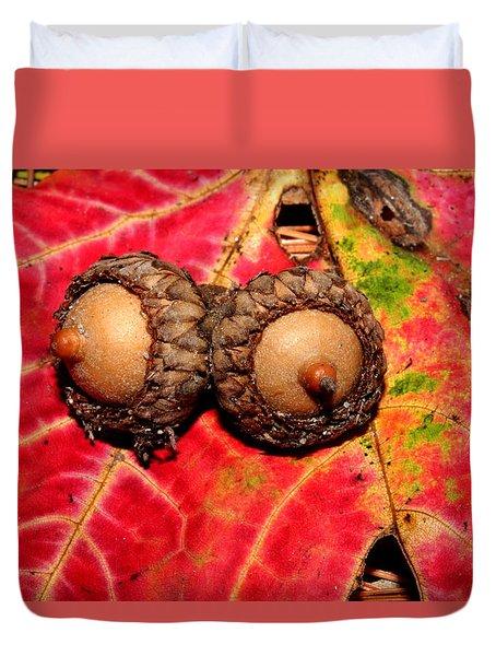 Two Acorns On Tatterd Maple Leaf 2 Duvet Cover by Robert Morin