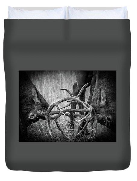 Two Bull Elk Sparring Duvet Cover