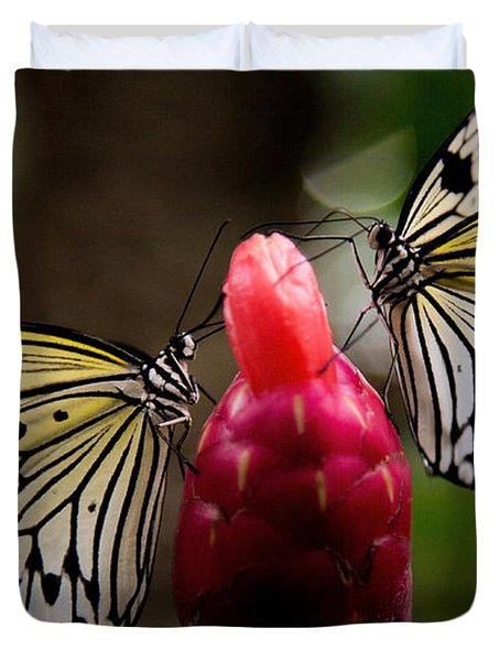 Duvet Cover featuring the photograph Two Butterflies by Sue Harper