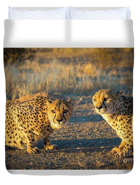 Two Cheetahs Duvet Cover by Inge Johnsson