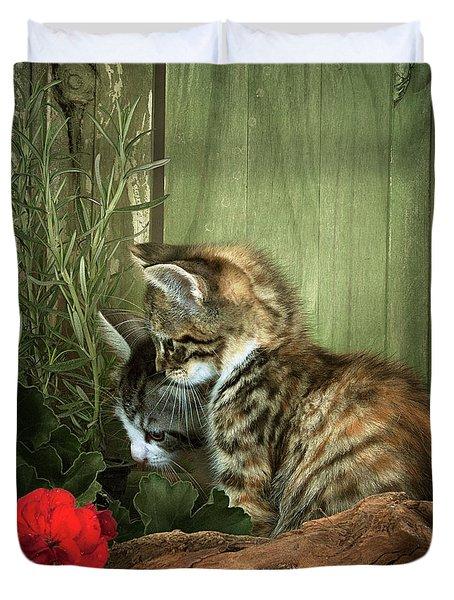 Two Cute Kittens Duvet Cover