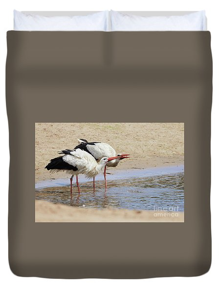Two Drinking White Storks Duvet Cover