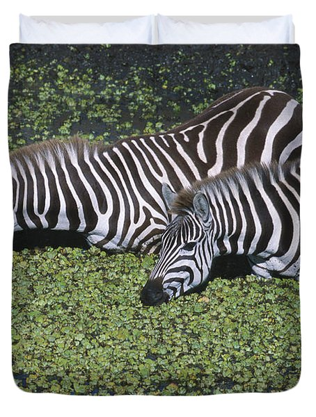 Two For Lunch Duvet Cover by Sandra Bronstein