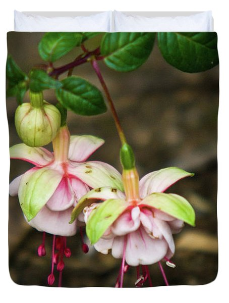 Two Fushia Blossoms Duvet Cover by Douglas Barnett