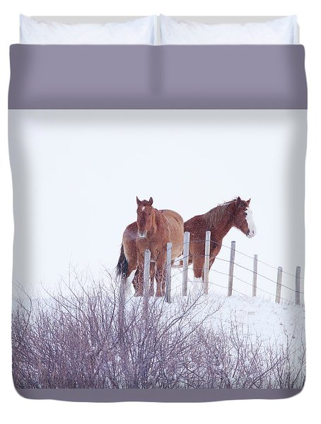 Two Horses In The Snow Duvet Cover