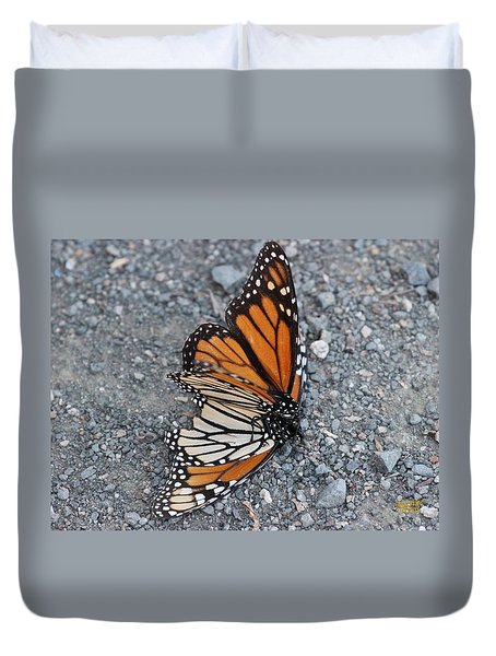 Two Monarchs Aflutter Duvet Cover