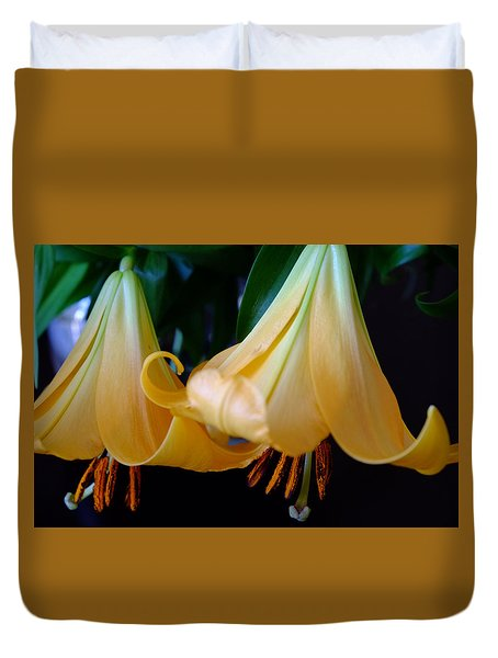 Two Orange Lilies Duvet Cover