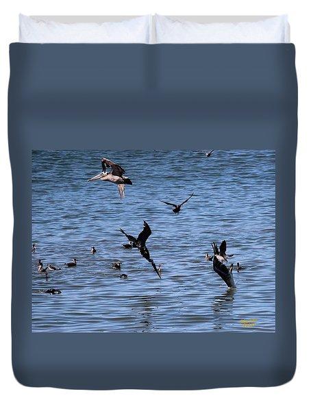Two Pelicans Diving  Duvet Cover