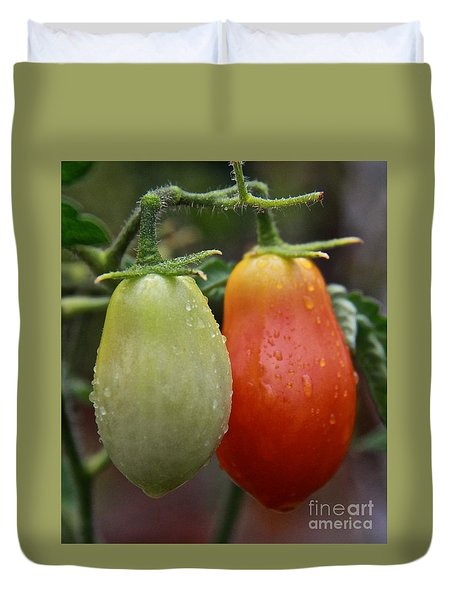 Duvet Cover featuring the photograph Two Romas by Suzanne Oesterling