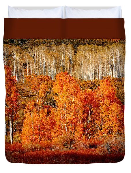 Two Rows Of Aspen Duvet Cover