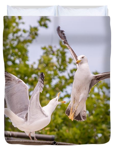 Two Seabird Fighting Duvet Cover