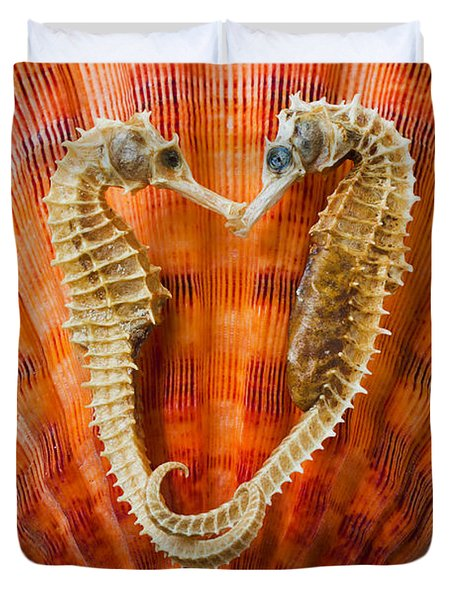 Two Seahorses On Seashell Duvet Cover