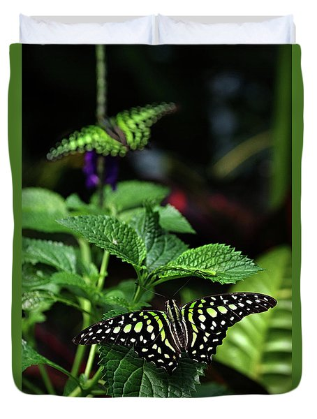 Two Tailed Jay Butterflies- Graphium Agamemnon Duvet Cover