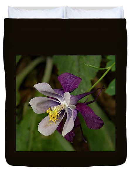 Duvet Cover featuring the photograph Two Toned Columbine by Jean Noren