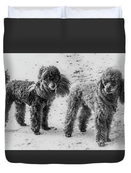 Two Toys B/w Duvet Cover