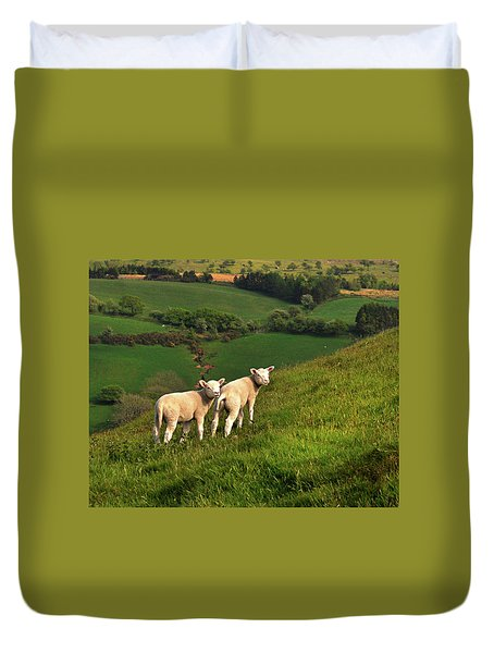 Two Welsh Lambs Duvet Cover