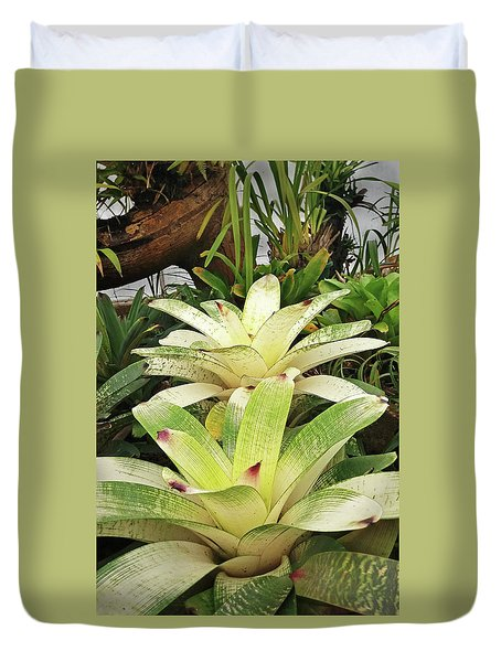 Two White Bromeliads Duvet Cover